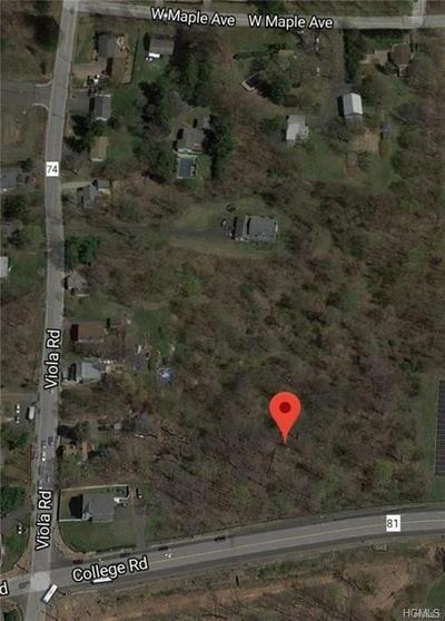 177 VIOLA RD, Ramapo, NY 10952 - Photo 1