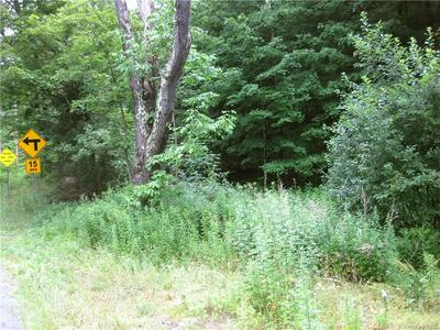 COUNTY ROUTE 125 ROAD, Callicoon Center, NY 12724 - Photo 1