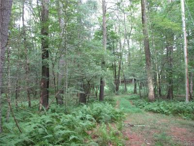 1563 US ROUTE 209, Deerpark, NY 12785 - Photo 2