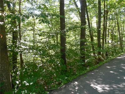 TRAVER HOLLOW ROAD, Boiceville, NY 12412 - Photo 2