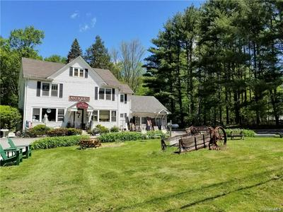 1100 STATE ROUTE 17B, Mongaup Valley, NY 12762 - Photo 2