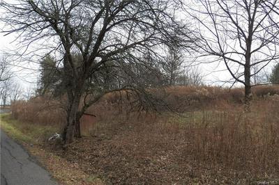 OLD GLEN WILD ROAD TR 103, Fallsburg, NY 12789 - Photo 2