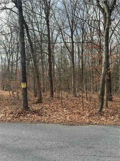 CRANS MILL ROAD, Pine Bush, NY 12566 - Photo 2