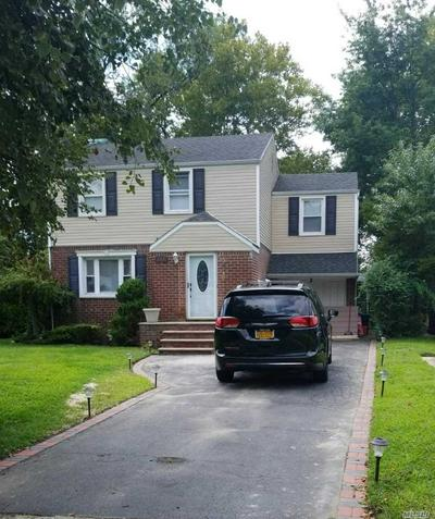 129 EMILY AVE, Elmont, NY 11003 - Photo 1