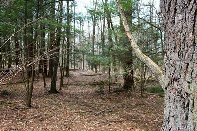 390 PINE TREE LN, Marbletown, NY 12401 - Photo 2