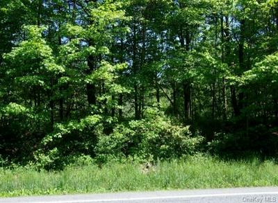 808 US ROUTE 209, Deerpark, NY 12729 - Photo 1