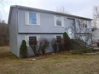 20 PAINTED APRON TER, Port Jervis, NY 12771 - Photo 2