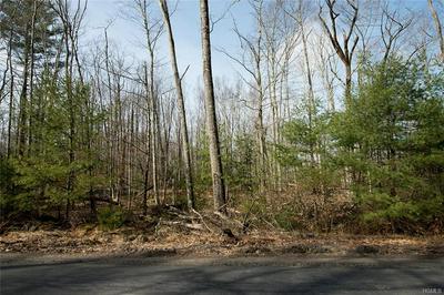 23.-1-1.21 PLANK ROAD, Forestburgh, NY 12777 - Photo 2