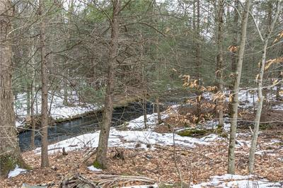 7568 STATE ROUTE 42, Neversink, NY 12740 - Photo 2