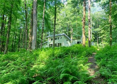 513 FORK MOUNTAIN RD, Out Of Area Town, PA 18417 - Photo 1