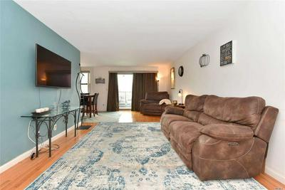 2 BIRCHWOOD CT APT 2L, Mineola, NY 11501 - Photo 2