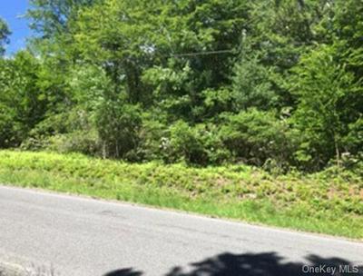 LOT 11.28 HILLTOP ROAD, Monticello, NY 12701 - Photo 2