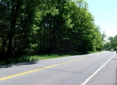 808 US ROUTE 209, Deerpark, NY 12729 - Photo 2