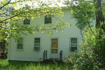 237 TAGHKANIC RD, Gallatin, NY 12523 - Photo 1