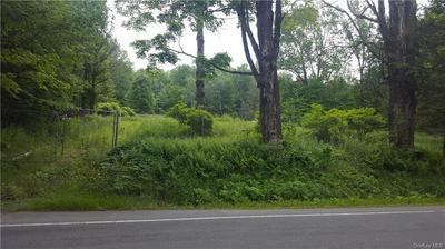 267 FERNDALE RD, Ferndale, NY 12734 - Photo 1