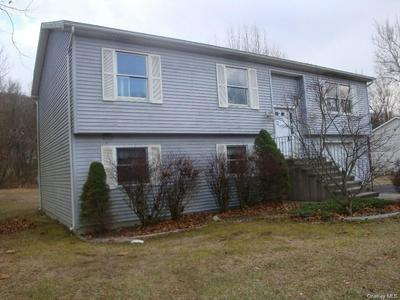 20 PAINTED APRON TER, Deerpark, NY 12771 - Photo 2