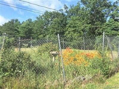 24 BIRCH RD, Lumberland, NY 12737 - Photo 2