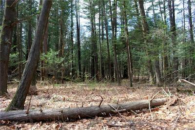 390 PINE TREE LN, Marbletown, NY 12401 - Photo 1