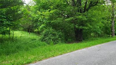 TWINSHAVEN ROAD, Neversink, NY 12765 - Photo 1