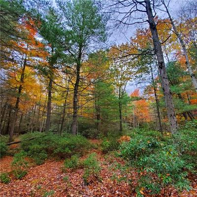 LOT 24 COUNTY ROUTE 56, Wurtsboro, NY 12790 - Photo 2
