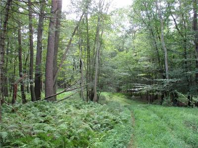 1563 US ROUTE 209, Deerpark, NY 12785 - Photo 1
