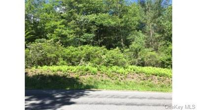 LOT 11.29 HILLTOP ROAD, Monticello, NY 12701 - Photo 2