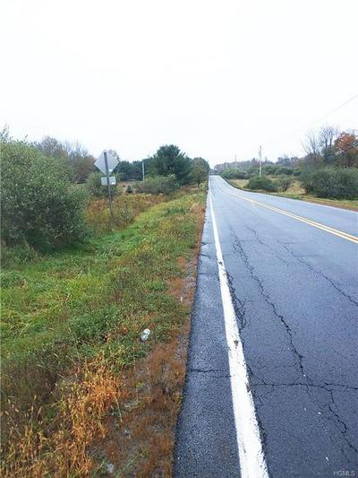 LOT 1.8 CO HWY 58 A/K/A GLEN WILD ROAD, Fallsburg, NY 12733 - Photo 2