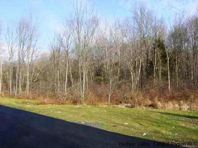 TBD LOT #5 HUCKLEBERRY TURNPIKE, Plattekill, NY 12568 - Photo 1
