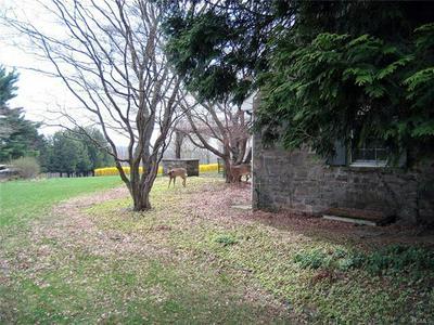 331 CHURCH RD, DAMASCUS, PA 18415 - Photo 2