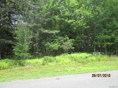 FARMSTEAD DRIVE, Neversink, NY 12765 - Photo 1