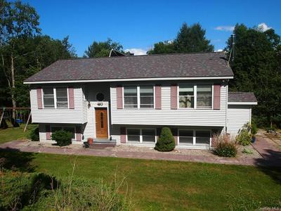 493 BENTON HOLLOW RD, Neversink, NY 12788 - Photo 1