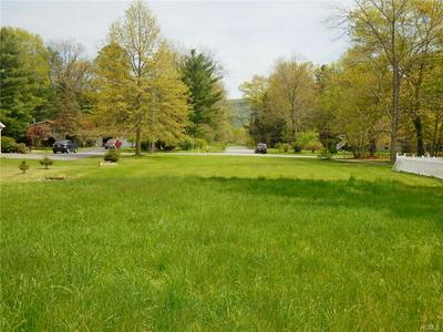 111 SPACE DR, Deerpark, NY 12746 - Photo 2