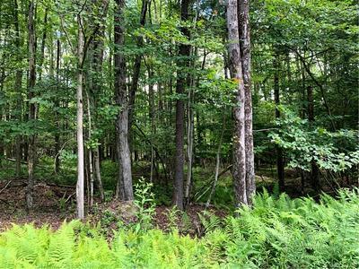 SMITH LANE, Grahamsville, NY 12765 - Photo 2
