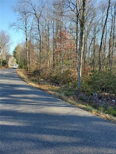 TBD DOWE ROAD, Wawarsing, NY 12428 - Photo 1