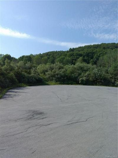 COUNTY HWY 13, Chester Town, NY 10918 - Photo 1