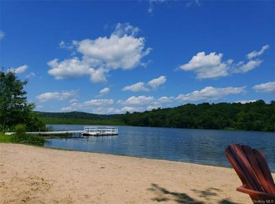 225 LAKE SHORE DR, Mahopac, NY 10541 - Photo 1