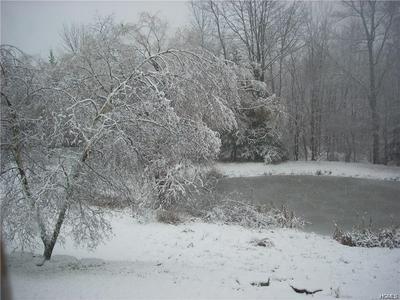 39 QUALLS RD, Cochecton, NY 12726 - Photo 2
