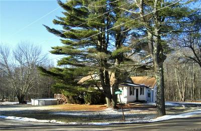 159 BROPHY RD, Fallsburg, NY 12747 - Photo 2