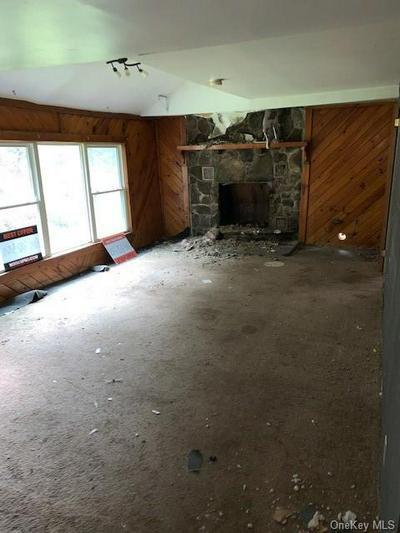 193 WAKEMAN BROOK RD, Walton, NY 13856 - Photo 2