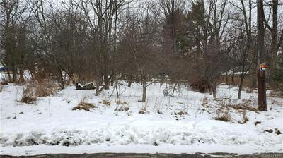 LAWRENCE AVENUE, Monticello, NY 12701 - Photo 1