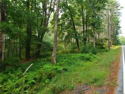 FORESTBURGH ROAD, Forestburgh, NY 12777 - Photo 1