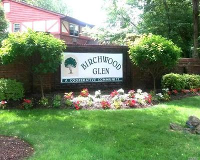 10 GLEN HOLLOW DR APT C16, Holtsville, NY 11742 - Photo 1