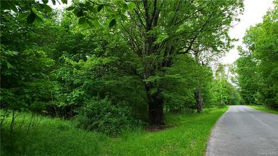 TWINSHAVEN ROAD, Neversink, NY 12765 - Photo 2
