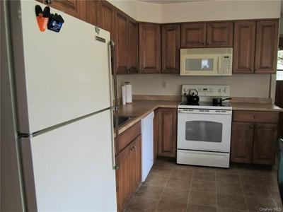 38 BENTON AVE, Thompson, NY 12701 - Photo 2