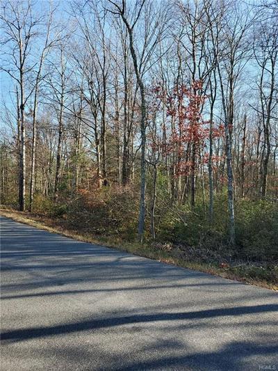 TBD DOWE ROAD, Wawarsing, NY 12428 - Photo 2