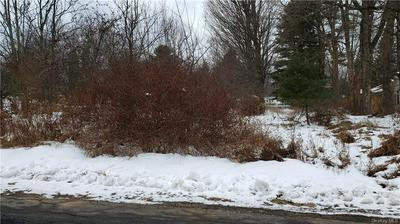 LAWRENCE AVENUE, Monticello, NY 12701 - Photo 2