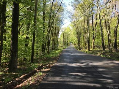 CREAMERY ROAD TR 20, Mongaup Valley, NY 12762 - Photo 2