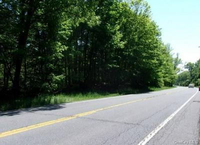 808 US ROUTE 209, Godeffroy, NY 12729 - Photo 2