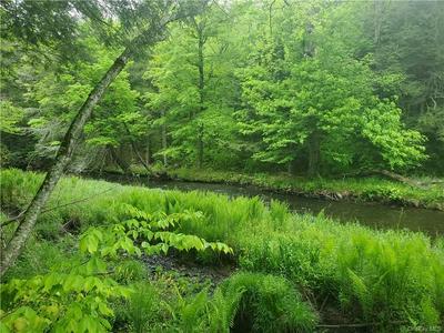 *** CREAMERY ROAD TR 20, Mongaup Valley, NY 12762 - Photo 2