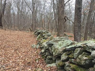 S QUAKER HILL ROAD, Pawling, NY 12564 - Photo 1